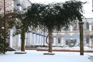 013.校园雪景.JPG